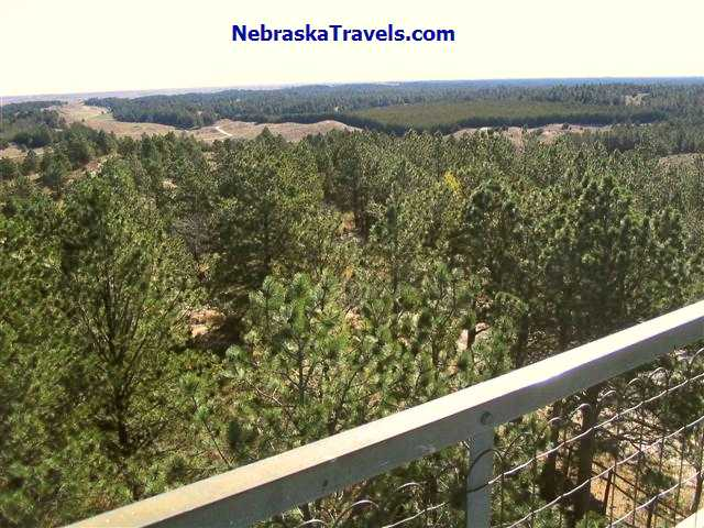 Halsey Nebraska National Forest from top of Fire Lookout Tower
